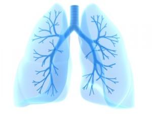 Allergies & Asthma Test